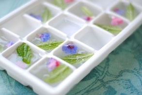 summer-decorating-ideas-ice-mint-flowers-tray-600x402 2.jpg